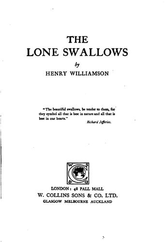 The lone swallows