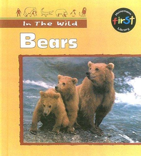Download Bears (In the Wild)