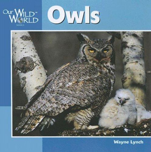 Owls (Our Wild World)