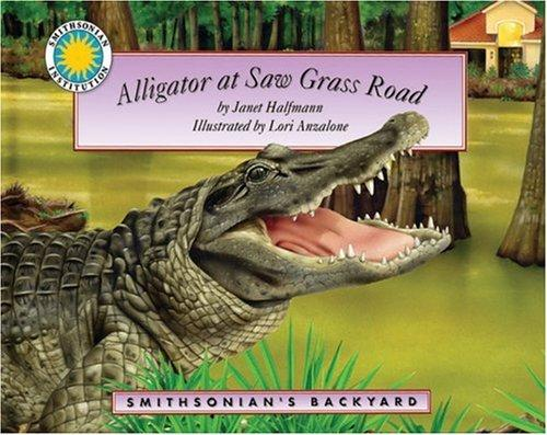 Download Alligator at Saw Grass Road (Smithsonian Backyard) (Smithsonian Backyard)