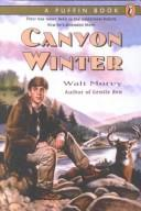 Download Canyon Winter