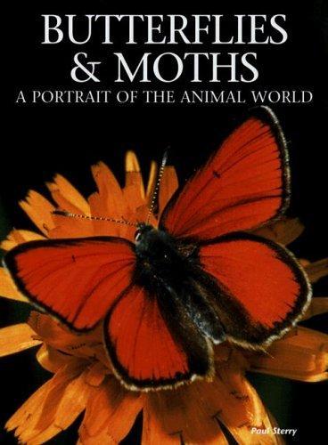 Download Butterflies and Moths