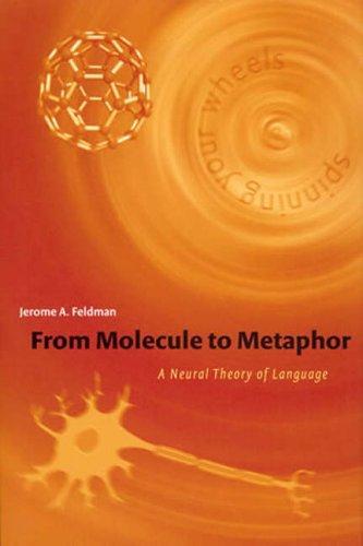 From Molecule to Metaphor