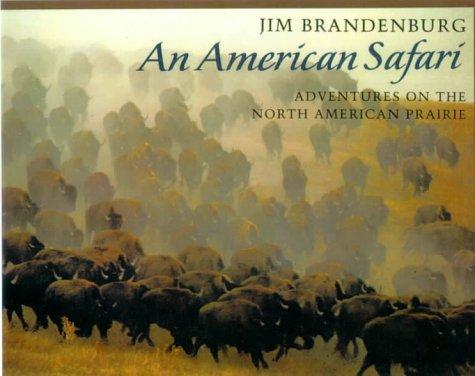 An American Safari
