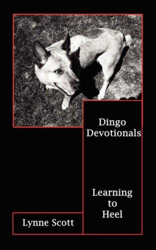 Dingo Devotionals by Lynne Scott