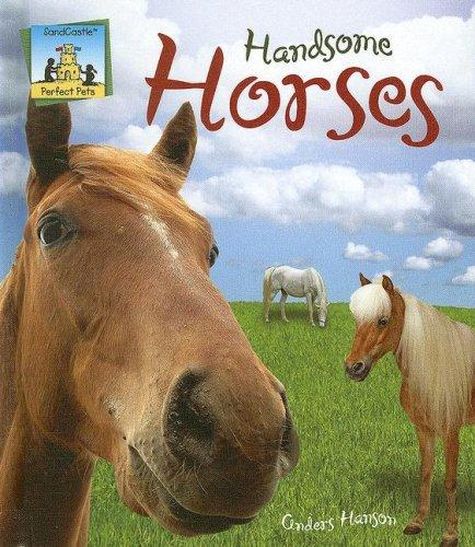 Handsome Horses (Perfect Pets) by
