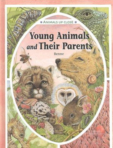 Young Animals and Their Parents (Animals Up Close) by Renne