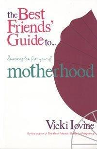 Best Friends' Guide to Surviving the First Year of Motherhood (Best Friends) by Vicki Iovine