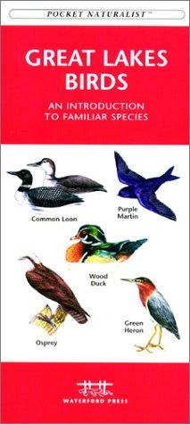 Great Lakes Birds by James Kavanagh