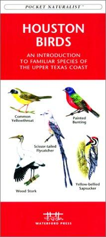 Houston Birds by James Kavanagh