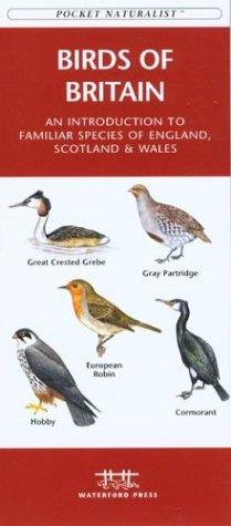 Birds of Britain by James Kavanagh